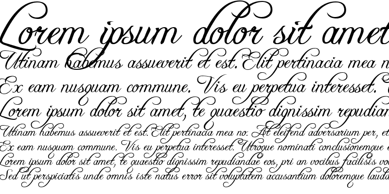 Sample of Freebooter Script
