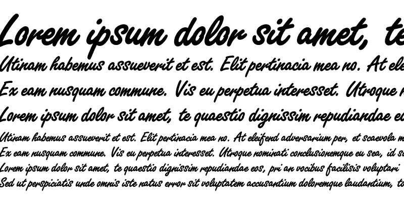 Sample of Freestyle Script Bold Plain Regular