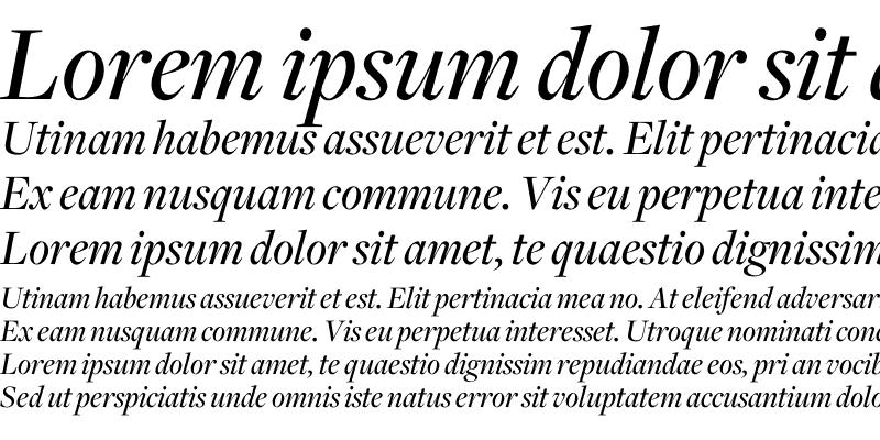 Sample of Freight Disp Medium Italic