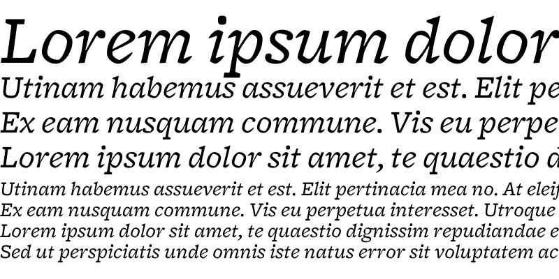 Sample of Freight Micro Book Italic