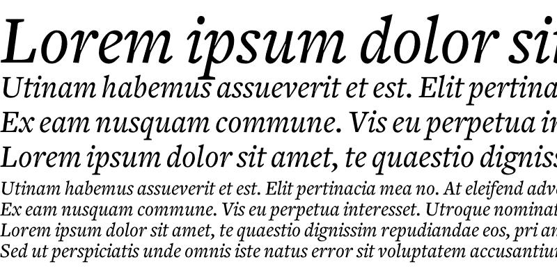 Sample of Freight Text Medium Italic