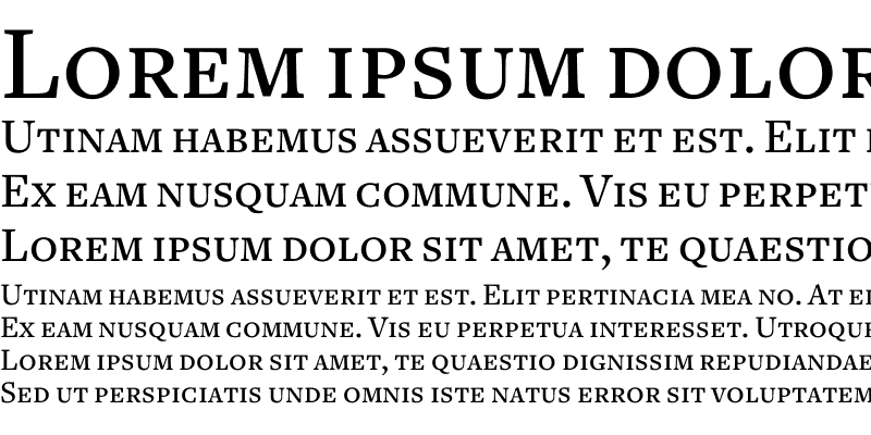 Sample of Freight Text Medium SC