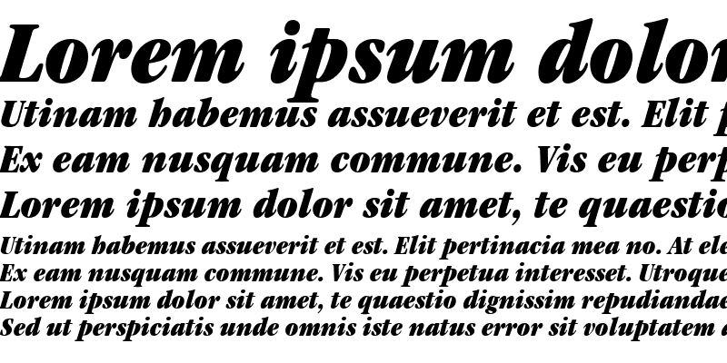 Sample of Garamond Black Condensed SSi Black Condensed Italic