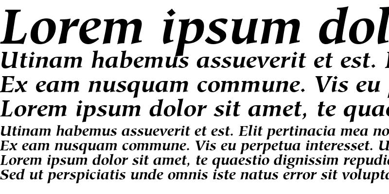 Sample of Glossary SSi Bold Italic