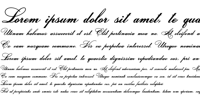 Sample of HeddyOpti-Script