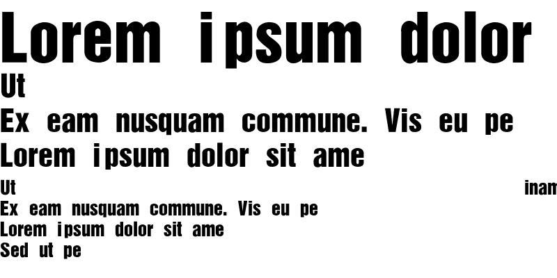 Sample of HelveticaInserat-Roman-SemiBold Regular