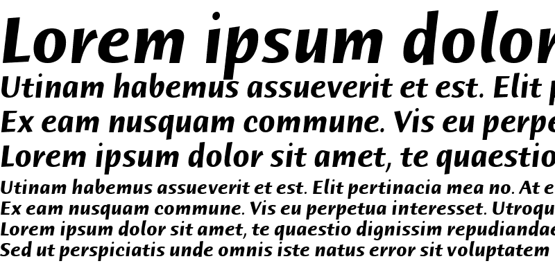 Sample of Humana Sans ITC TT BoldItalic
