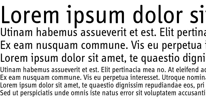Sample of InfoDispRegularTf Roman