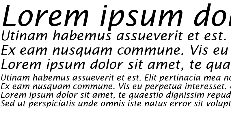 Sample of Insight Sans SSi Italic