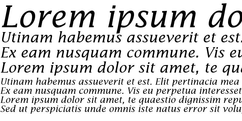 Sample of Insight SSi Italic