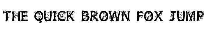 Preview of JFWildWood Regular