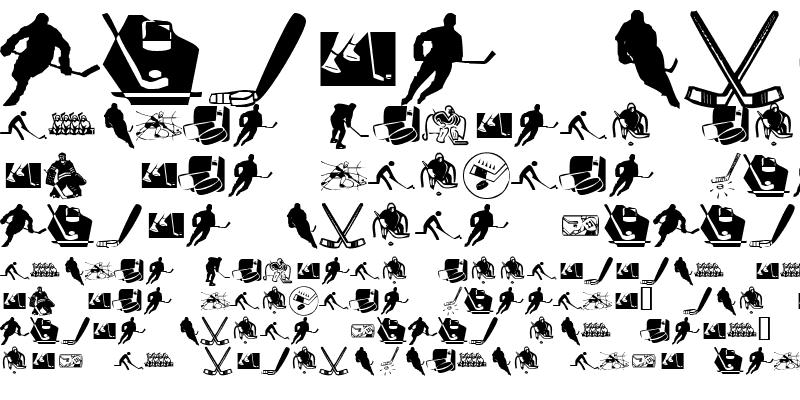 Sample of KR Hockey Dings Regular
