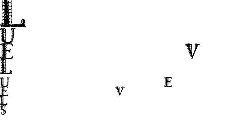 Sample of LACETRIM Regular