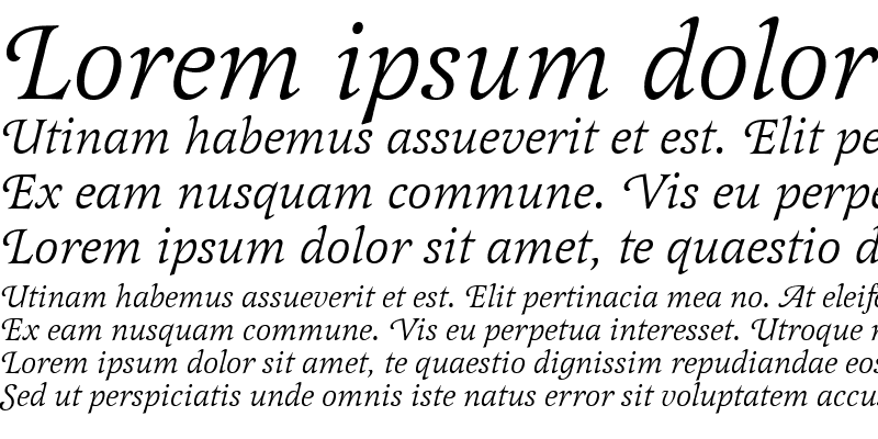 Sample of LatienneSwaTEE Italic