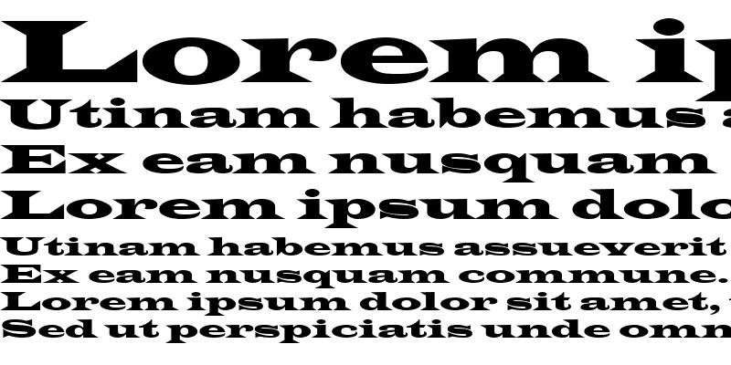 Sample of Latin-WideExt