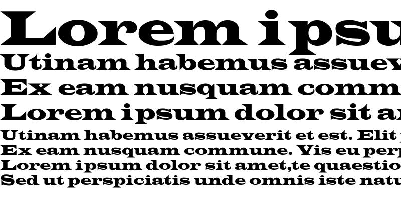 Sample of LatinWideCnd-No Regular