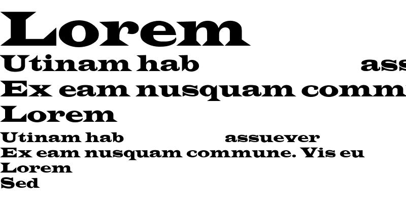 Sample of LatinWideCnd-Normal