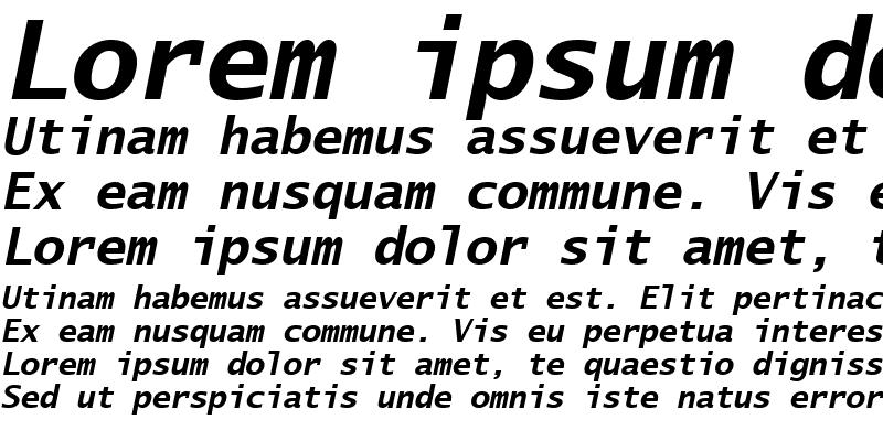 Sample of Lucida Sans Typewriter Bold Oblique