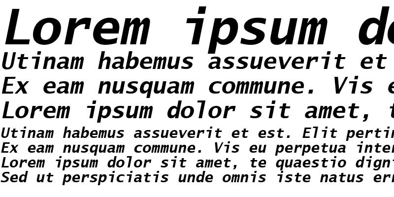 Sample of LucidaSansTypewriter BoldItalic