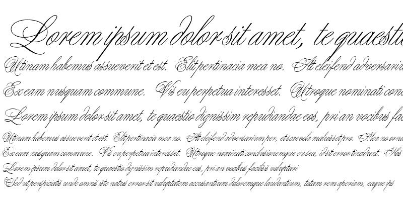 Sample of Margarita script