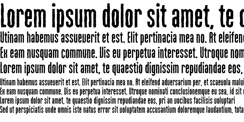 Sample of MartenCyr GrotesqueRough Regular