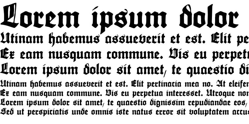 Sample of Maximilian Regular
