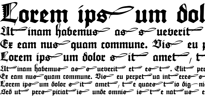 Sample of Maximilian Zier Regular