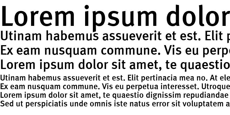 Sample of Meta Medium Roman