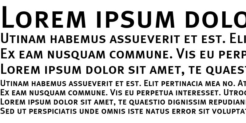Sample of MetaPlusMedium-Caps