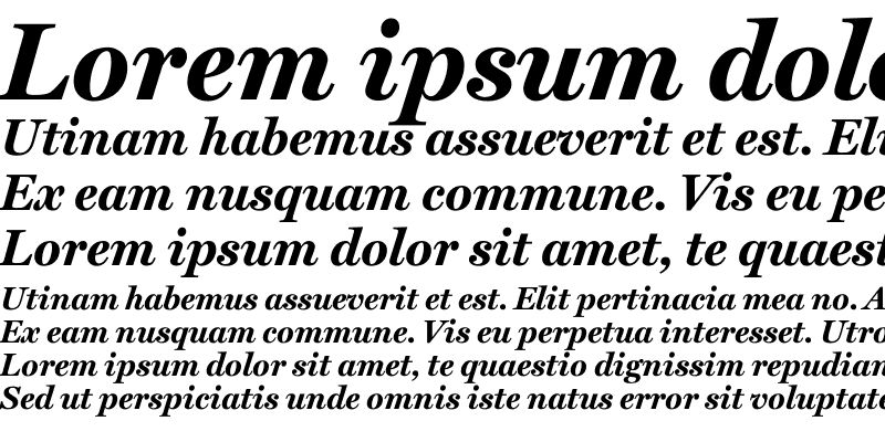 Sample of Miller Text Bold Italic