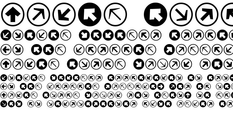 Sample of Mini Pics Directional RA