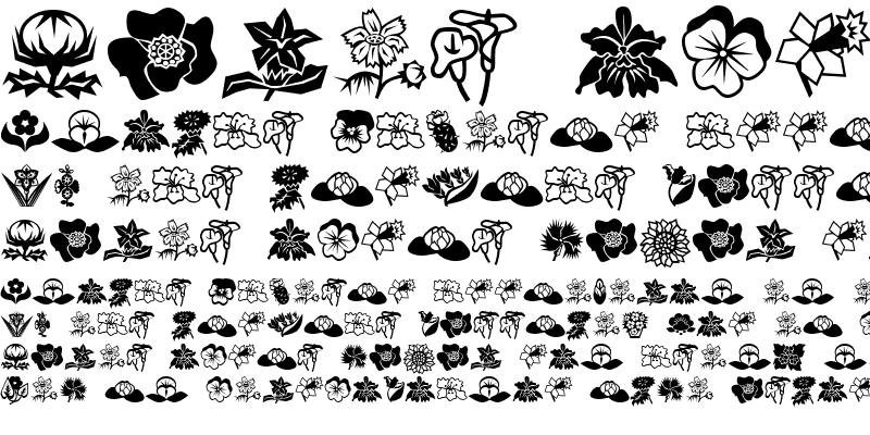 Sample of Mini Pics Lil Flowers