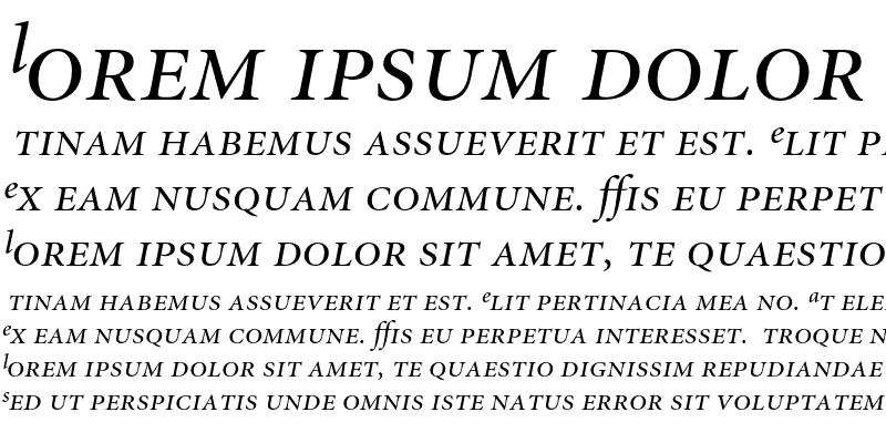 Sample of Minion Expert Display Italic