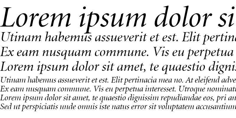Sample of Minion LT Display Italic