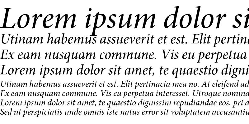 Sample of Minion Pro Medium Italic Subhead