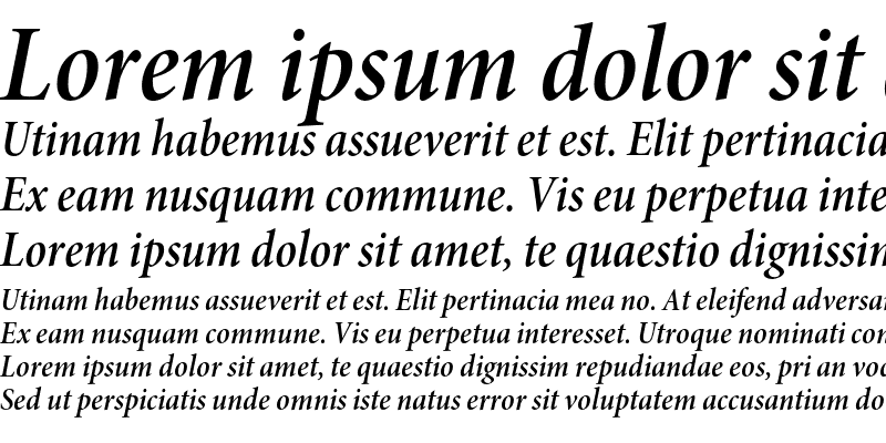 Sample of Minion Pro Semibold Cond Italic Subhead