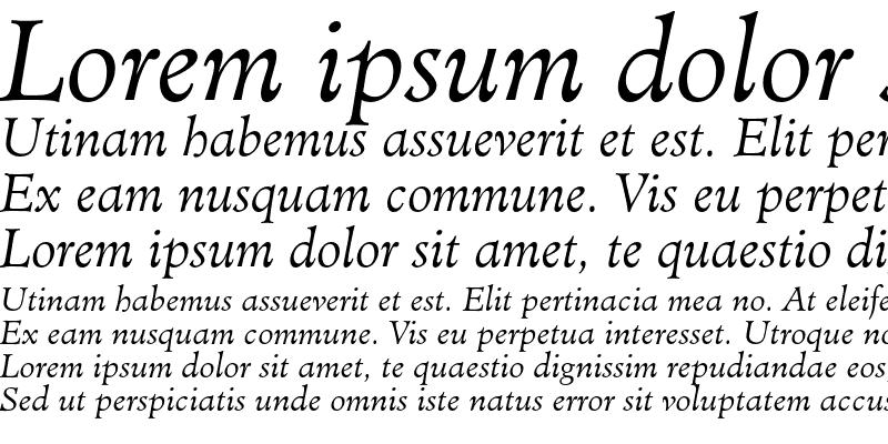 Sample of Minister Light Italic
