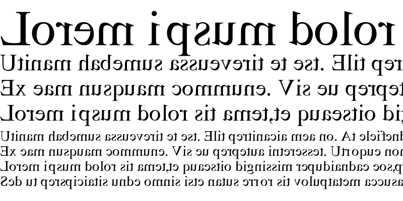 Sample of Miror-Mirror