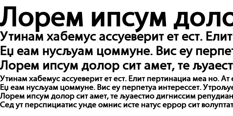 Sample of MMyriad Roman