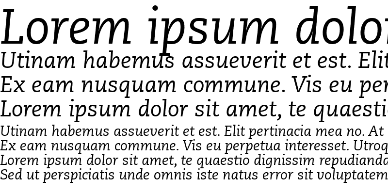 Sample of Monologue SSi Italic