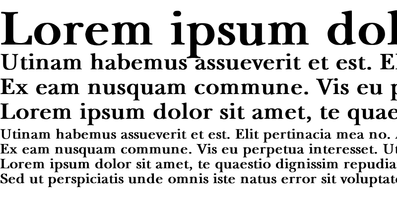 Sample of NewBaskerville Bold