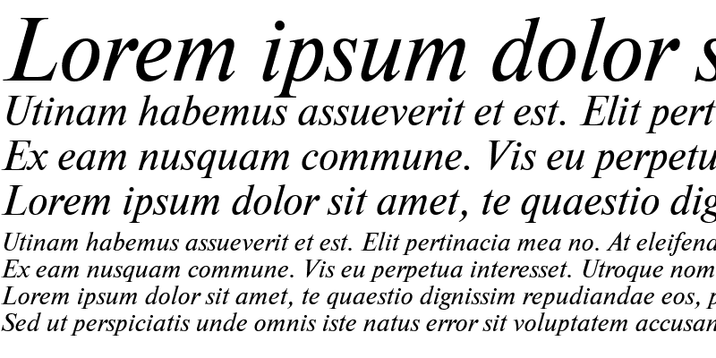 Sample of NewtonMACCTT Italic