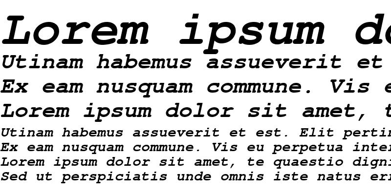 Sample of NimbusMonLEE Bold Italic