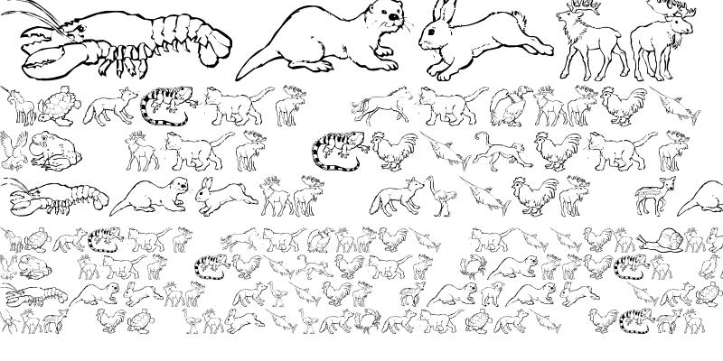 Sample of Nina's Animals