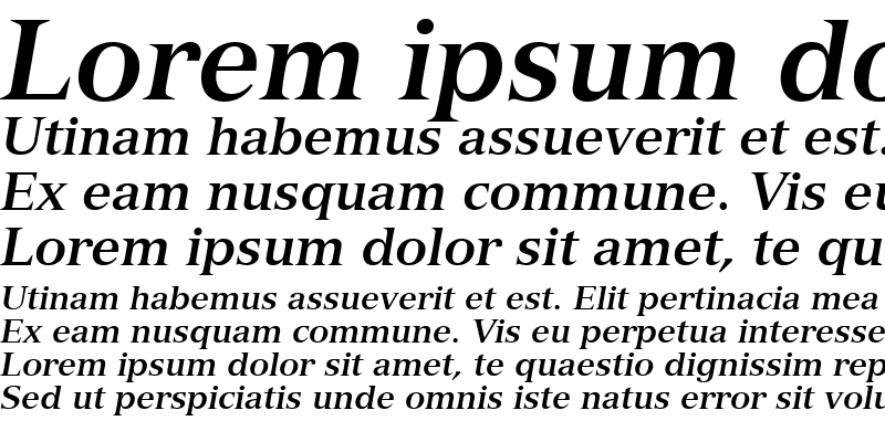 Sample of Nuance SSi Bold Italic