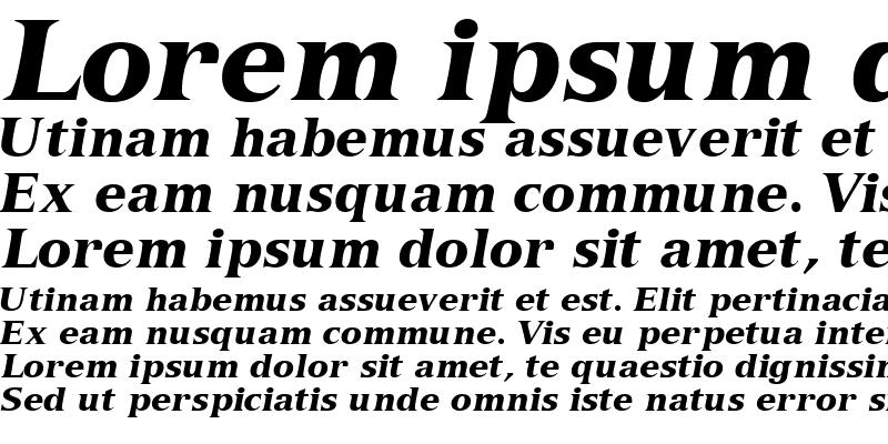 Sample of NuanceBlackSSK Italic