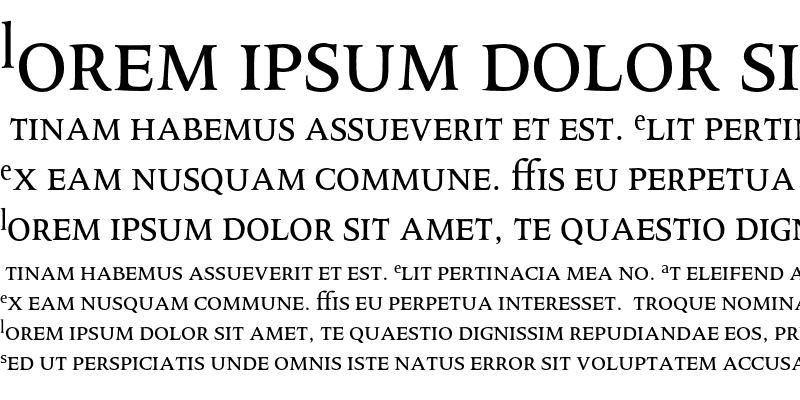 Sample of Octavian MT Expert Regular