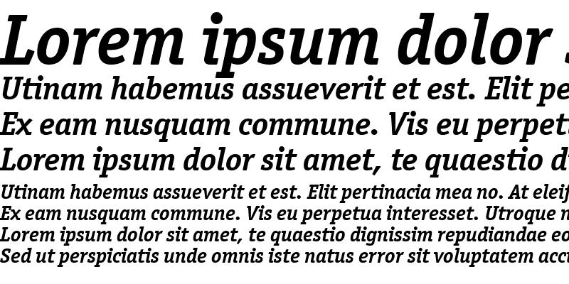 Sample of Officina Serif ITC TT BoldIta