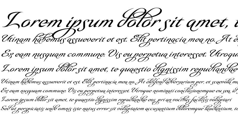 Sample of Olidia