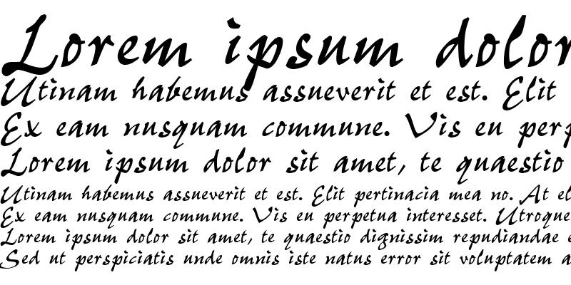 Sample of P700-Script